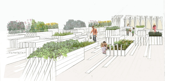 Plans Of 10 Community Gardens Shown At Same Scale. Simple